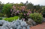 クラ・ロッジ 植物園